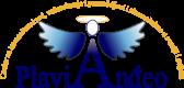 plavi andeo logo